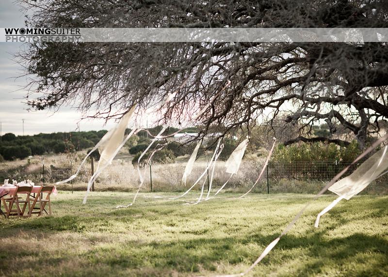 ribbons_7798water.jpg