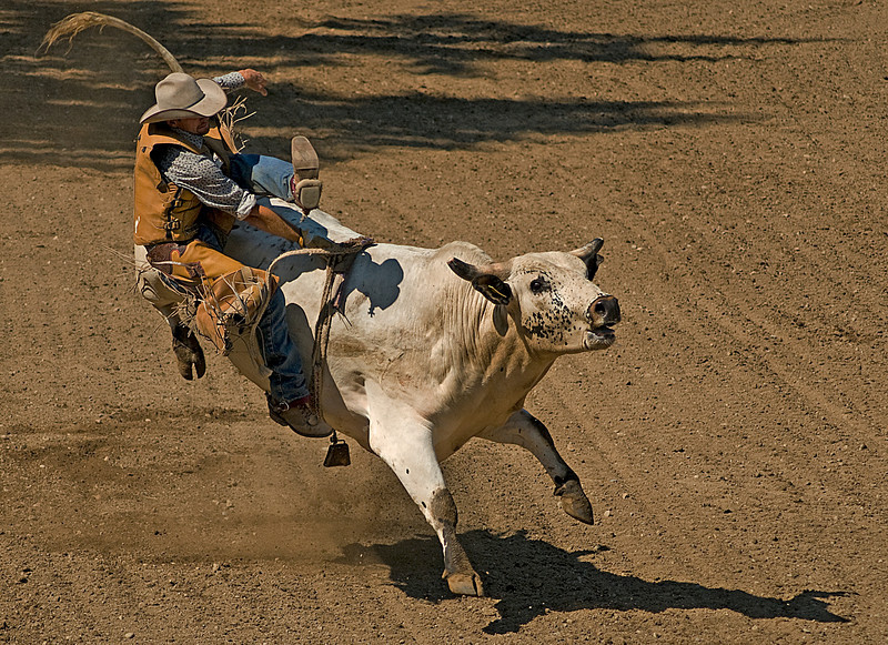 COOMBS RODEO-2009-3718A.jpg