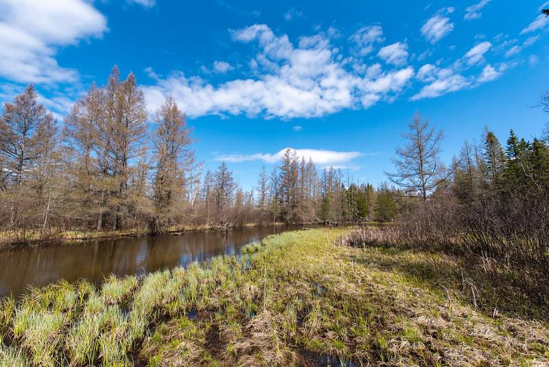 HW_2487-Serenity-Pines-Ct_0020.jpg