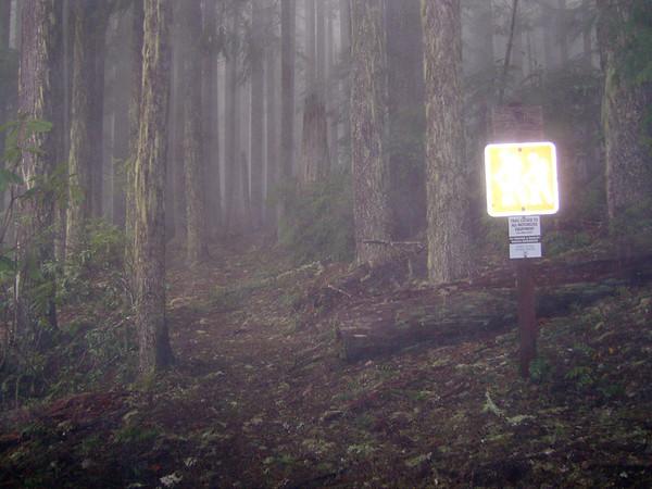 Mt June hike in Umpqua NF