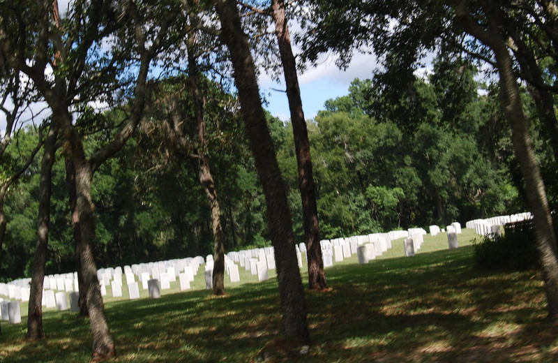 15 Graves at Florida National Cemetery.jpg