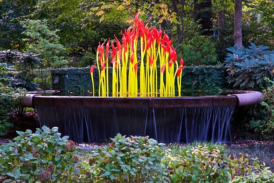 Chihuly Glass Atlanta Botanical Garden
