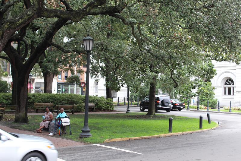 FMR_Savannah_20110715_021.JPG