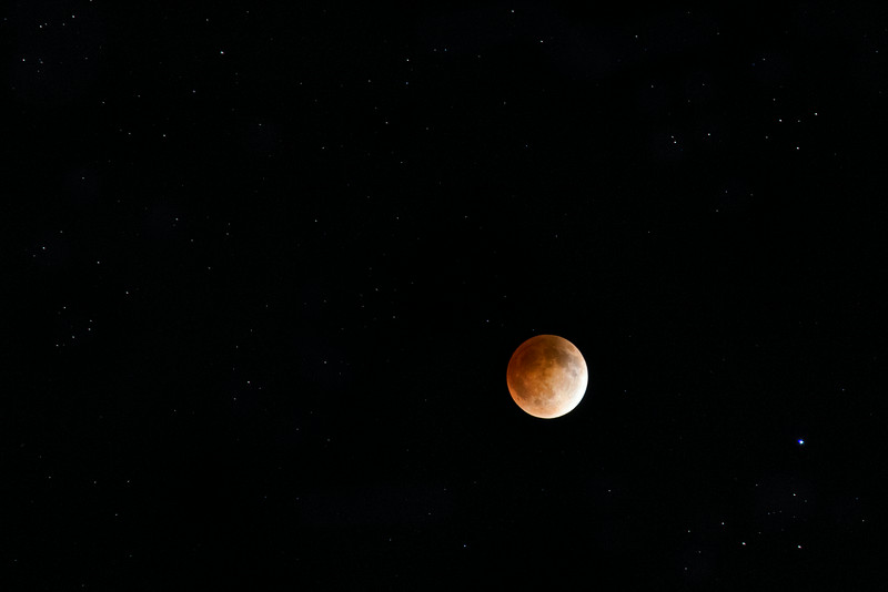 eclipse Blood Moon 2014.jpg