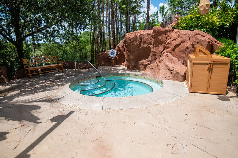 Dinsey Resorts-2-261.jpg