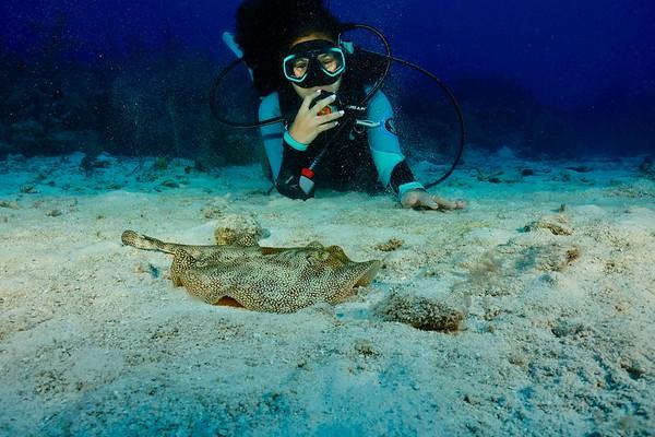 June 15-22 Grand Cayman Cobalt Coast Summer