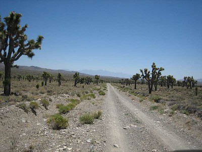 Inyo DV Loop. June 2008