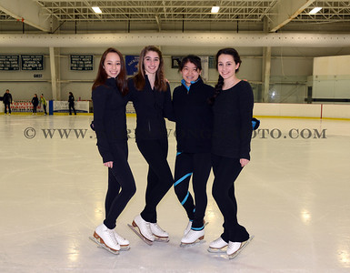 DHS Figure Skating Team 2014