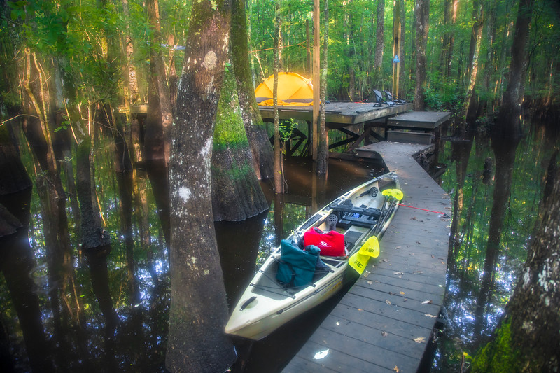 Roanoke River Camping Platform