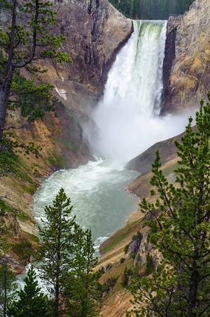 20110712 Yellowstone