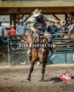 Saddle Bronc- Seniors Fri-Sun  2019