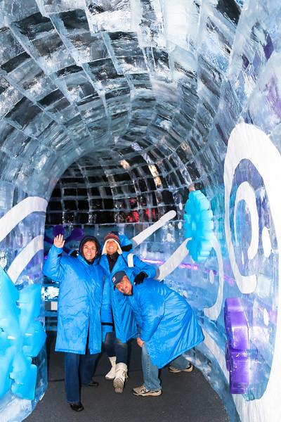 ICE at the Gaylord Hotel at National Harbor near Washington DC - December 7, 2014