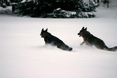 2008.12.23 Ari and Brita in Snow