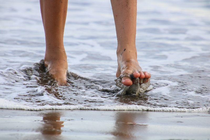 Childrens (kids) feet walking in the waves and beach