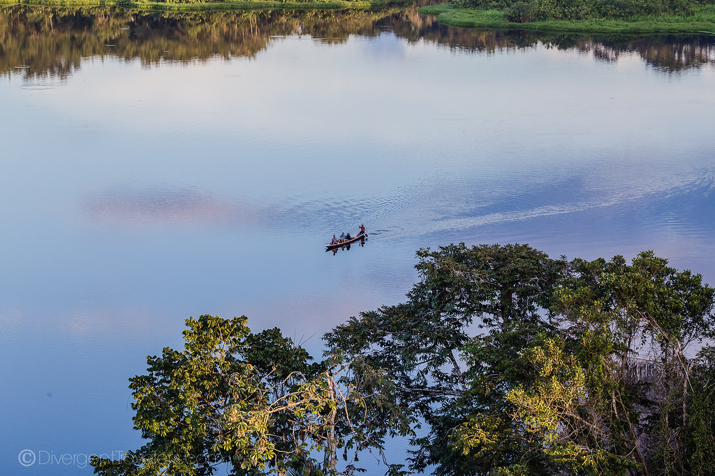 Practical Guide to Visiting the Amazon in Ecuador