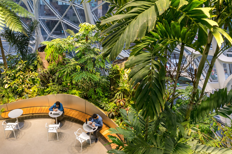 Pratt_Amazon Spheres_012.jpg