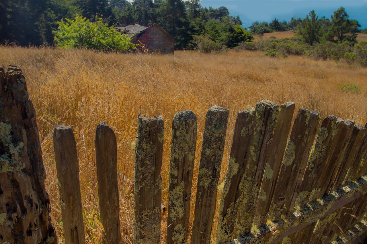Weathered Fence