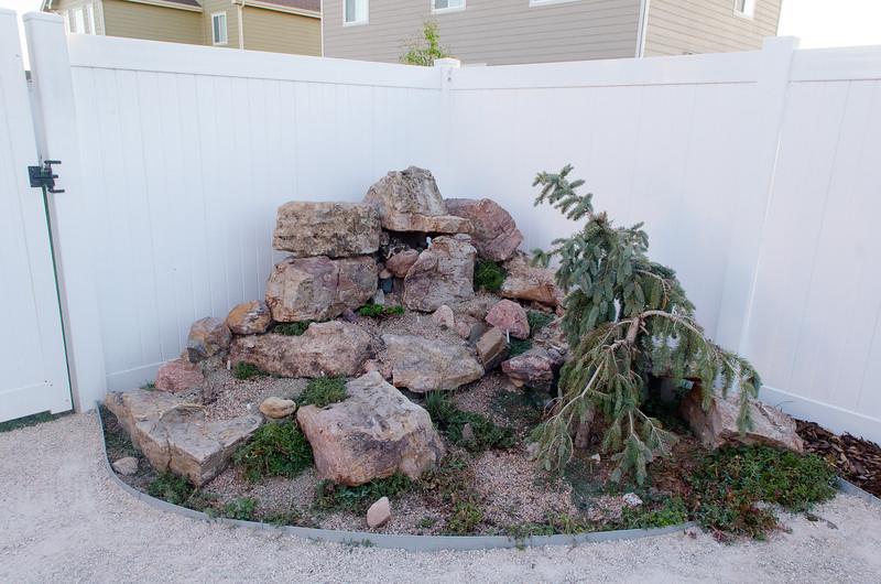 Backyard (10).jpg