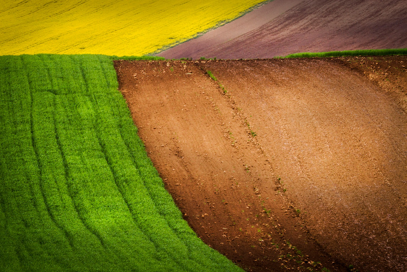 Moravian patchwork