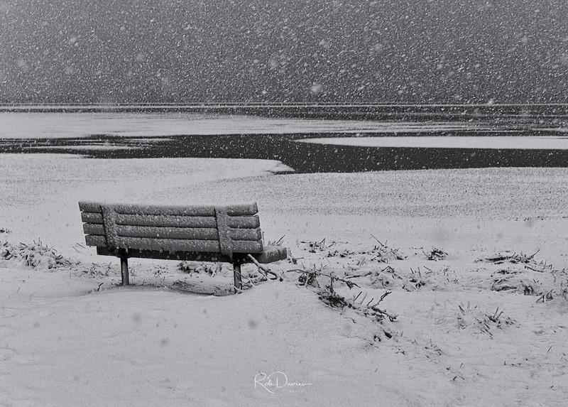 2021_02_Cape cod snow20210207-3M3A9775_Luminar4-edit-Edit.jpg