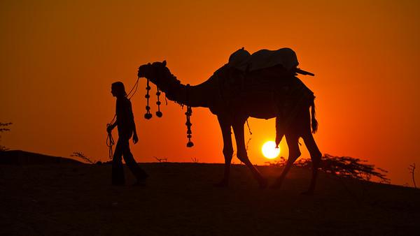 Pushkar Camel Fair (Inida)
