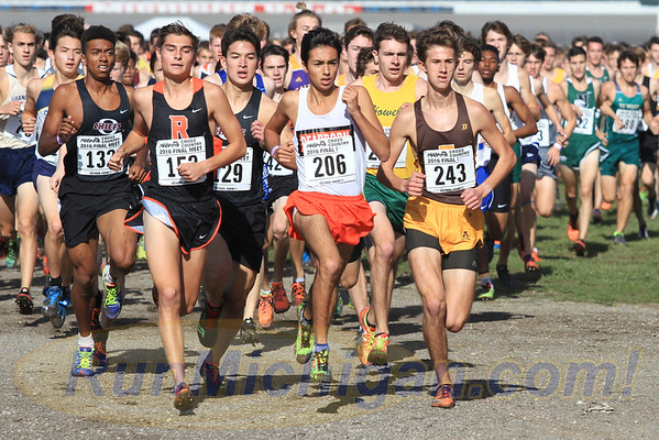 2016 MHSAA LP XC Finals - Division ONE - November 5