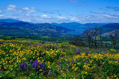 McCall Point Trail