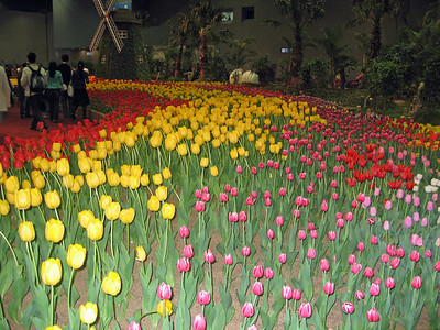 World Flower Exhibition 2006, Seoul