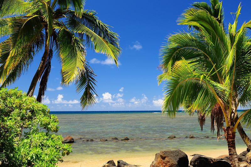 2012_Kauai_Hawaii_August_  0010.JPG