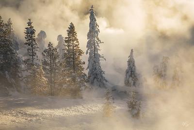 *NEW WORK* Yellowstone In Winter
