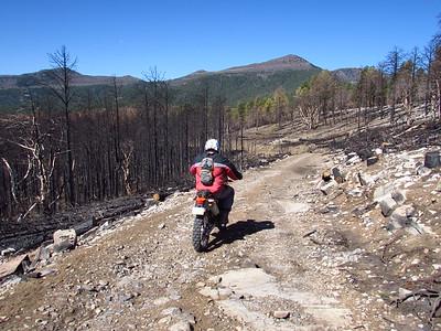 Manzano Mtns. area DS Ride  4-17-17