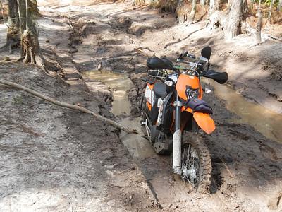 Creek 2012