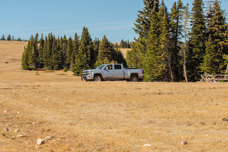 Steve's truck-1.jpg