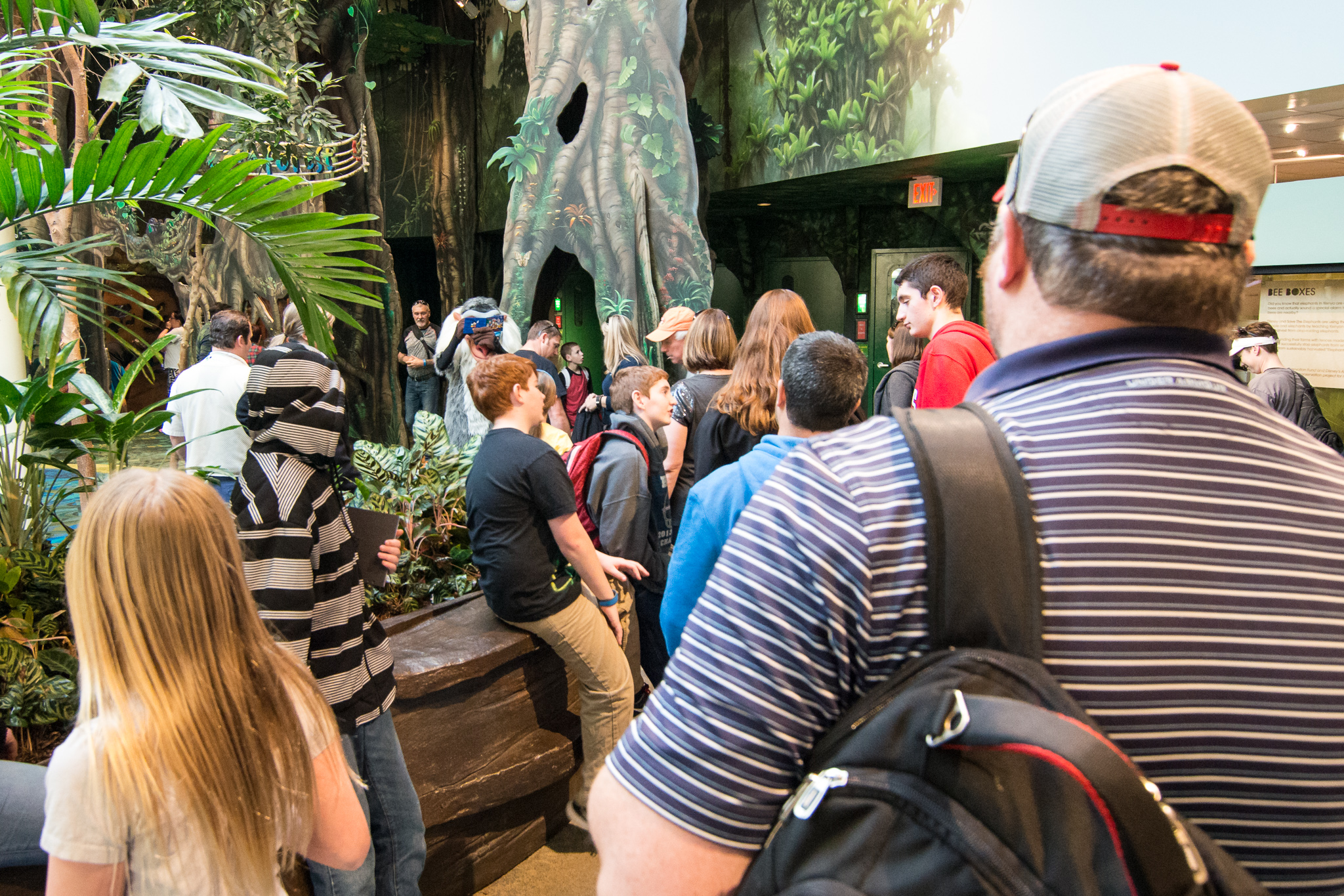 Rafiki Meet & Greet at Disney's Animal Kingdom