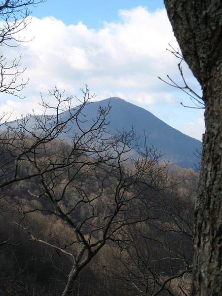 Views are limited on the way up. During the first bit of trail The Peak can be seen through the trees.