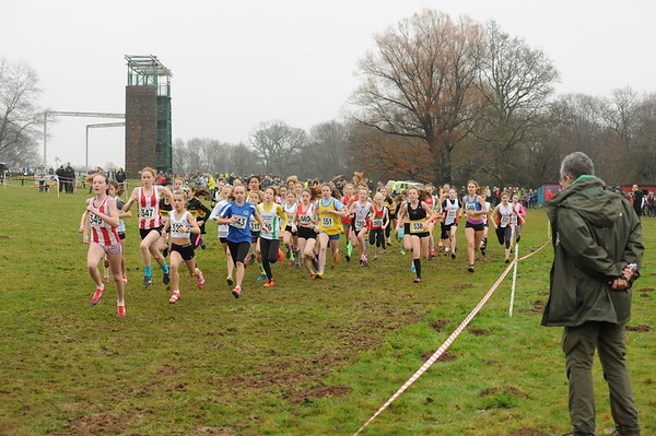 Hampshire cross country championships  - 7/1/17