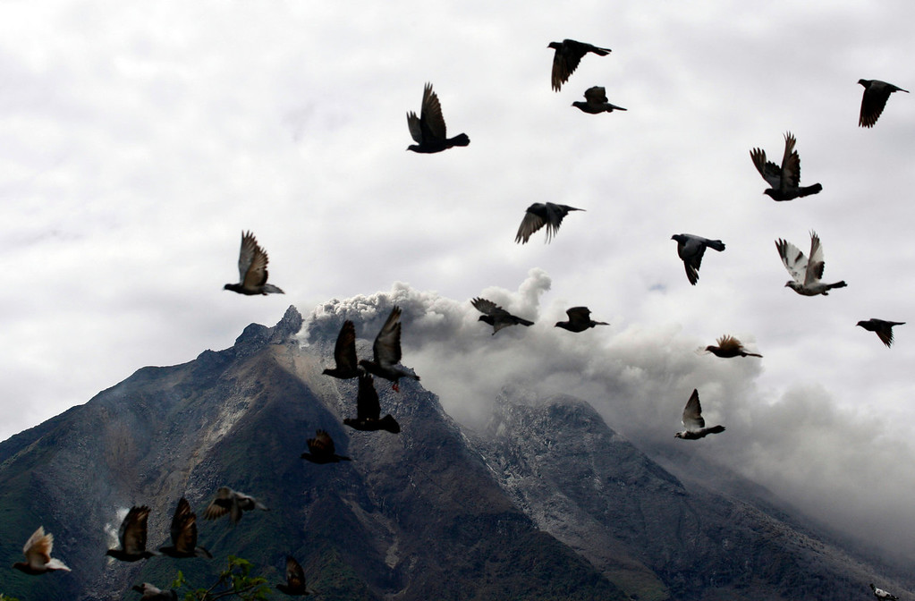 . Pigeons fly by as Mount Sinabung spews volcanic materials following its eruption in Karo, North Sumatra, Indonesia, Sunday, Sept. 15, 2013. Thousands of people have been evacuated from their homes after the volcano erupted early Sunday. (AP Photo/Binsar Bakkara)