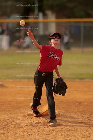 Cardinals at  Tigers 5/24/21