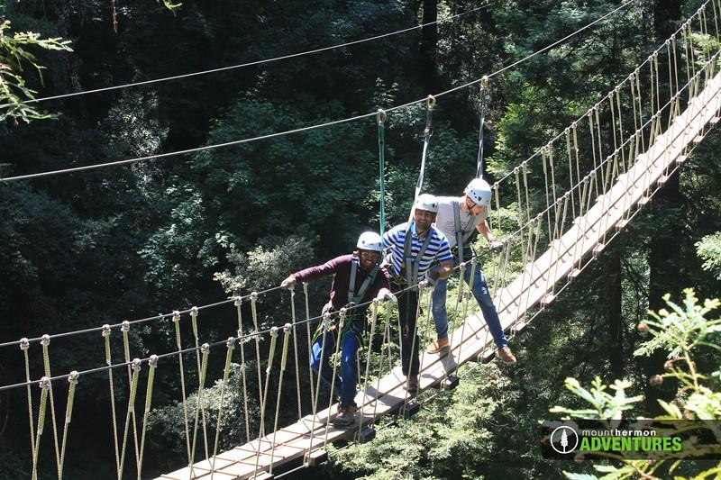 redwood_bridge_1528409963272.jpg