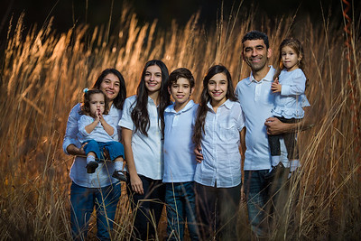 Buzguta Family