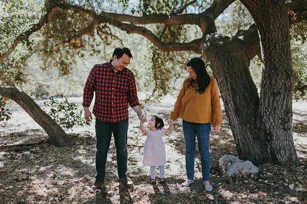 Lin Family
