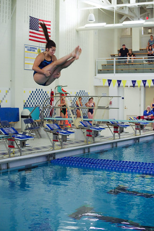 HPHS Swimming and Diving