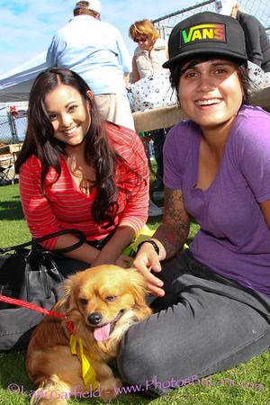 Super Pet Adoption 11/23/13