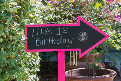2015-05-16 Lila's 1st Bday Party