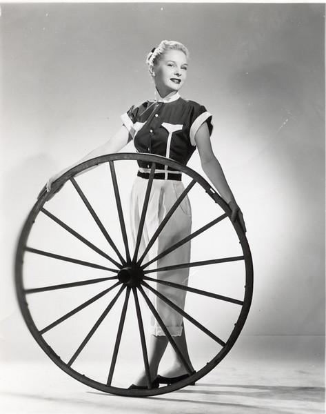 Omi Model Wheel.jpg