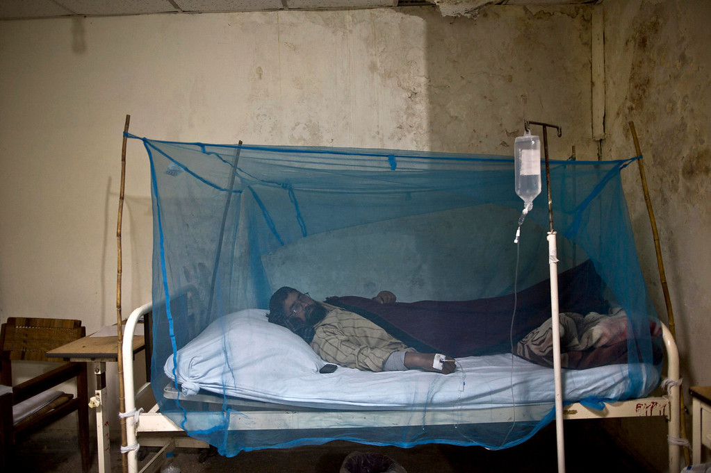 . A Pakistani man suffering from the mosquito-borne disease, dengue fever, lies in a bed covered with a net at an isolation ward of a hospital in Rawalpindi, Pakistan, Monday, Nov. 11, 2013. Dengue, a flu-like illness is spread by the Aedes mosquito and spikes during the annual monsoons, when the rains leave puddles of stagnant water where the insects breed. (AP Photo/Muhammed Muheisen)