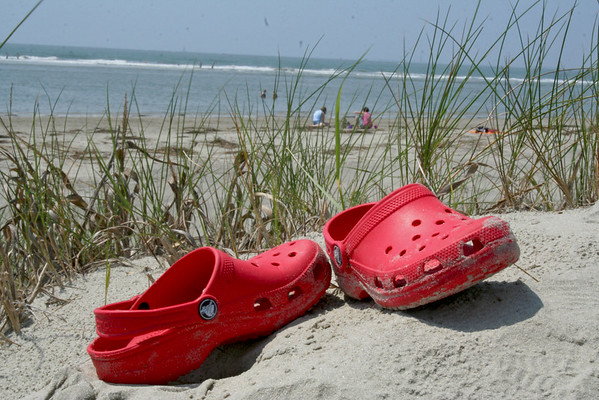 Lowcountry Beaches Visions