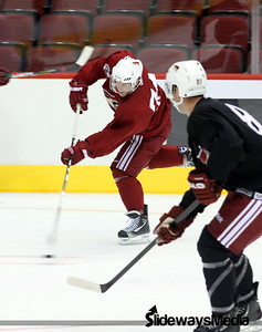 Coyotes Rookie Camp 2011 Day 1