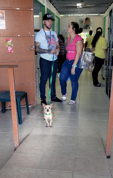 Villa Michelle Albergue De Animales