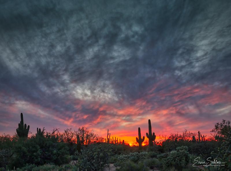 Sabino Sunset 10-39-2018x-.jpg